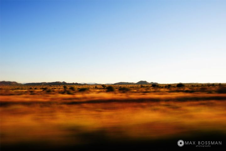 Driving Through South African Savanna